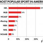 世界で最も成功したスポーツビジネス:アメフトNFLとスーパーボウル