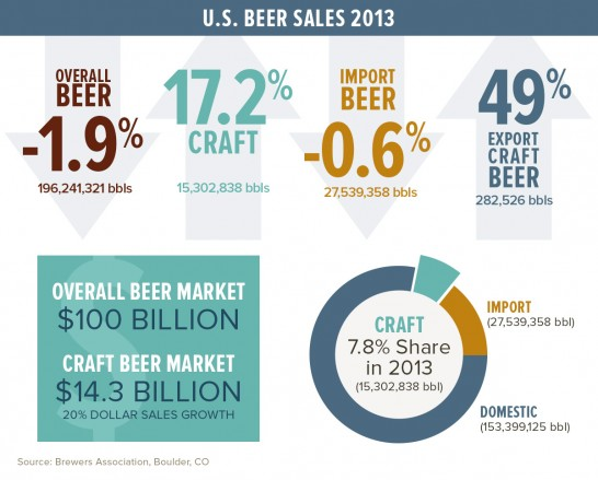 american-beer-2013-infographic