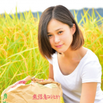 美女と稲刈り:魚沼産コシヒカリ、新米できました