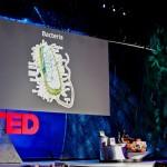 プレゼンを準備する前に繰り返し読みたいおすすめの一冊『TED TALKS』